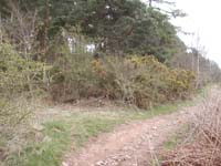 Point of entry from Dere Street on left