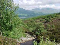 Achmore Burn, Loch Tay and Ben Lawers